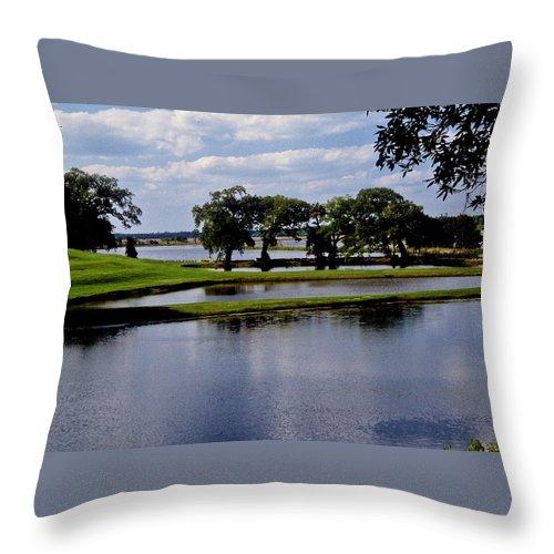 Lake Throw Pillow featuring the photograph Charleston South Carolina by Gary Wonning