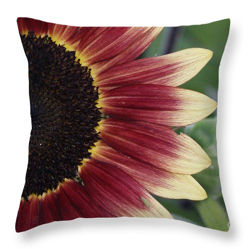 Photography Throw Pillow featuring the photograph If It Makes You Happy by Shelley Jones