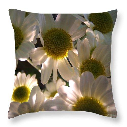 Artoffoxvox Throw Pillow featuring the photograph Illuminated Daisies Photograph by Kristen Fox