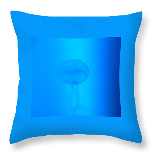 Jellyfish Throw Pillow featuring the photograph Illuminati Jellyfish by Heather Lennox