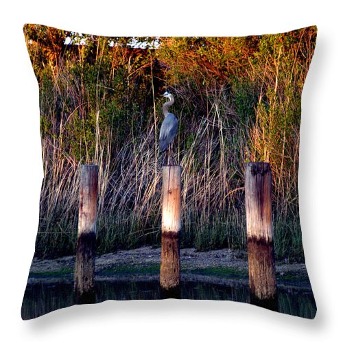 Clay Throw Pillow featuring the photograph Illusion by Clayton Bruster
