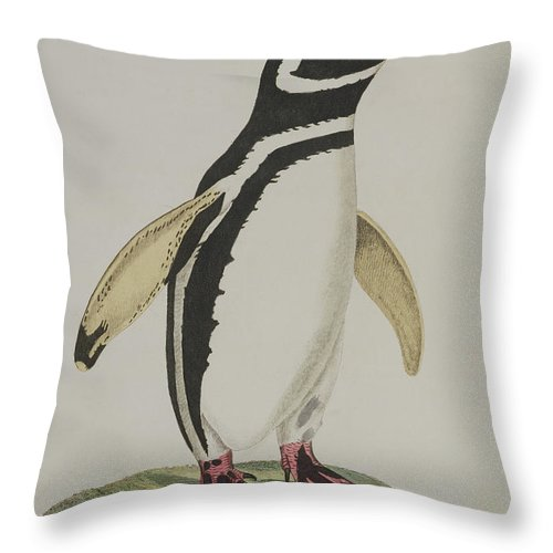 Penguin Throw Pillow featuring the painting Illustration Of A Penguin by John Frederick Miller
