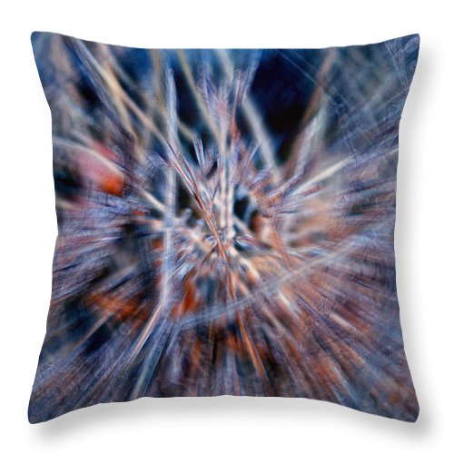 Abstracts Throw Pillow featuring the digital art I'm Dreaming by Linda Sannuti