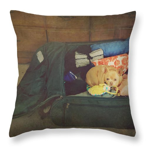 Dog Throw Pillow featuring the photograph I'm Going With You by Laurie Search