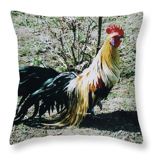 Cock Throw Pillow featuring the photograph I'm Ready... by Iliyan Bozhanov