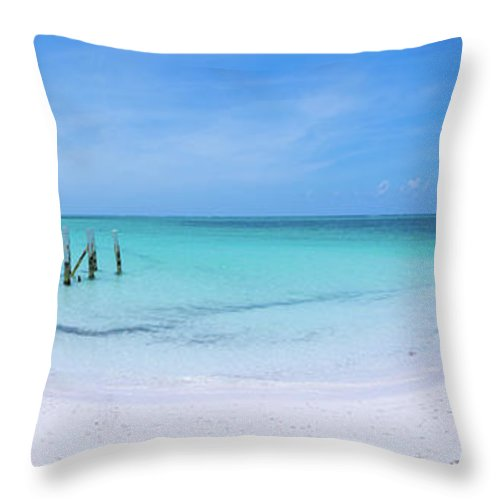 Nature Throw Pillow featuring the photograph Imagine by Chad Dutson