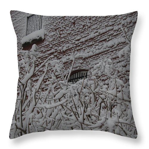Brick Throw Pillow featuring the photograph Imprisoned by Faith Harron Boudreau