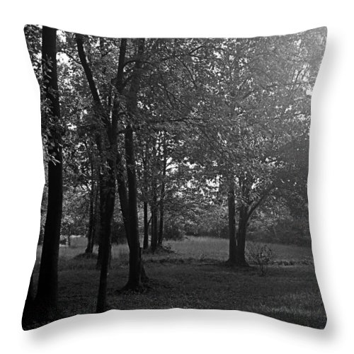 Feild Throw Pillow featuring the photograph In A Dream by Hannah Breidenbach