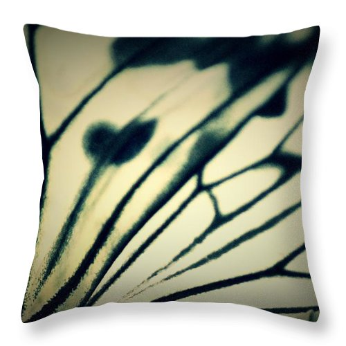 Throw Pillow featuring the photograph In Abstract by The Art Of Marilyn Ridoutt-Greene