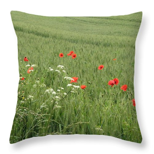 Lest-we Forget Throw Pillow featuring the photograph in Flanders Fields the poppies blow by Mary Ellen Mueller Legault