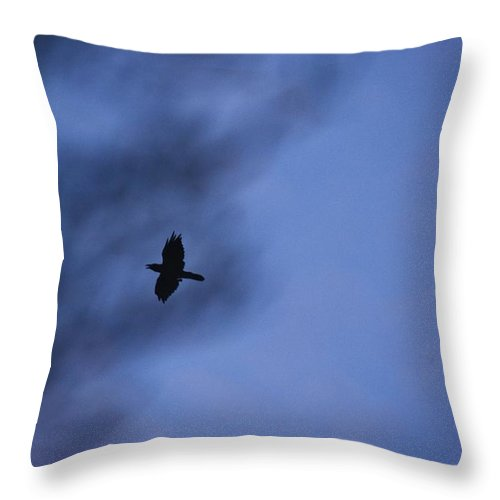 Linda Brody Throw Pillow featuring the photograph In Flight At Dusk by Linda Brody