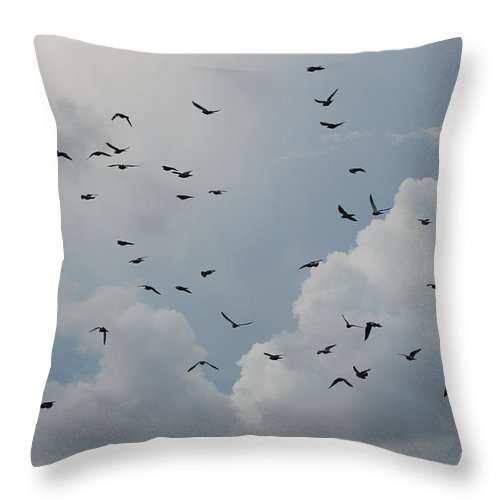 Birds Throw Pillow featuring the photograph In Flight by Rob Hans