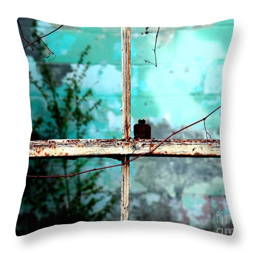 Windows Throw Pillow featuring the photograph In Or Out by Amanda Barcon