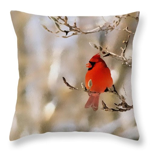 Cardinal Throw Pillow featuring the photograph In Red by Gaby Swanson