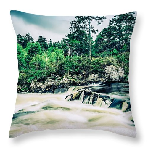 Tree Throw Pillow featuring the photograph In Retreat by Radek Spanninger