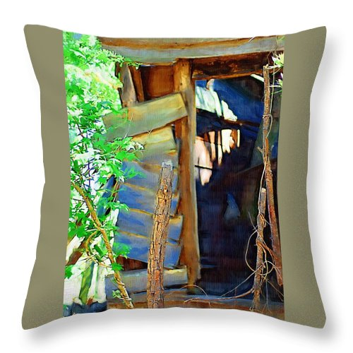 House Throw Pillow featuring the photograph In Shambles by Donna Bentley