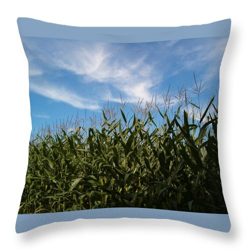 Farming Throw Pillow featuring the photograph In The Field by Sara Raber