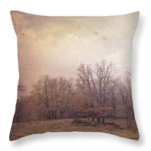Landscape Throw Pillow featuring the photograph In The Field by Toni Hopper