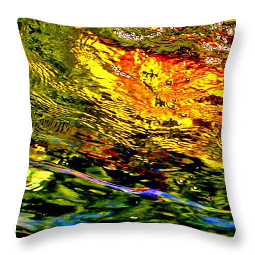 Water Throw Pillow featuring the photograph In The Flow 3 by Michael Durst