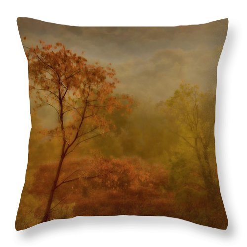 Fog Throw Pillow featuring the photograph In the fog by Gaby Swanson