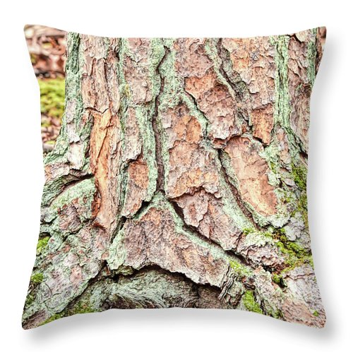 Tree Throw Pillow featuring the photograph In The Forest Art Series - Tree Bark Patterns 1 by Kerri Farley