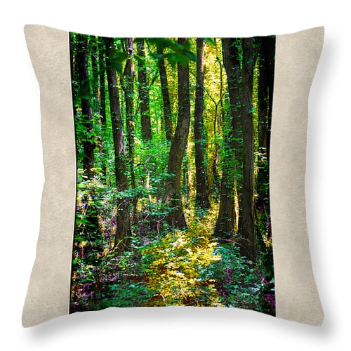 Forest Throw Pillow featuring the photograph In The Forest With Words by Jai Johnson