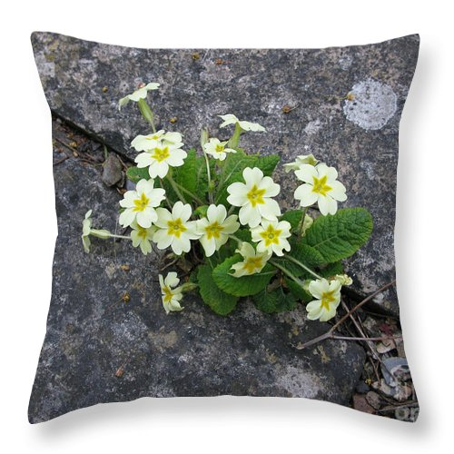 Primrose Throw Pillow featuring the photograph In The Garden Path by Ann Horn