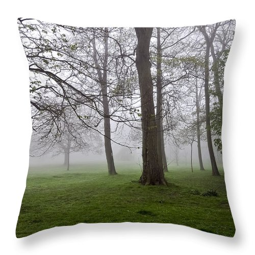 Fog Throw Pillow featuring the photograph In The Morning01 by Svetlana Sewell