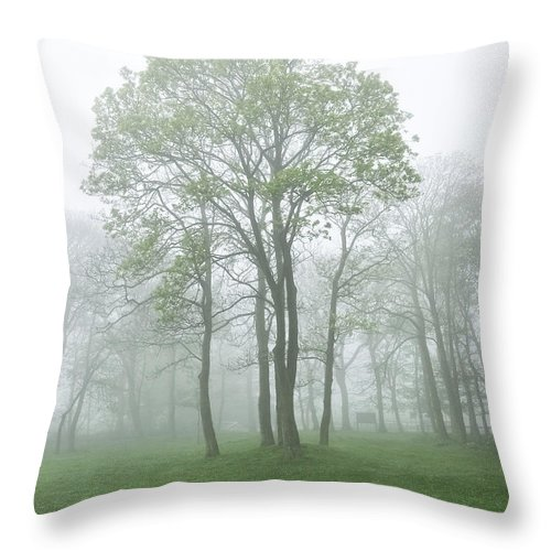 Fog Throw Pillow featuring the photograph In The Morning03 by Svetlana Sewell