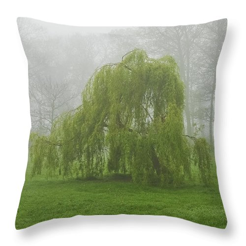 Fog Throw Pillow featuring the photograph In The Morning04 by Svetlana Sewell