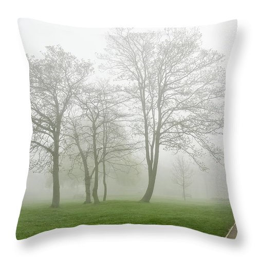 Fog Throw Pillow featuring the photograph In The Morning06 by Svetlana Sewell