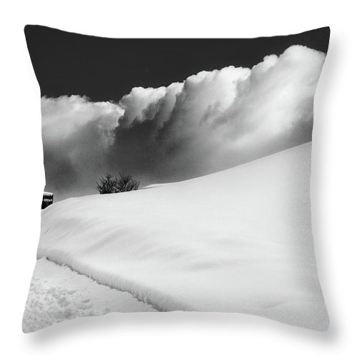 Bw Throw Pillow featuring the photograph in the Ore Mountains by Dorit Fuhg
