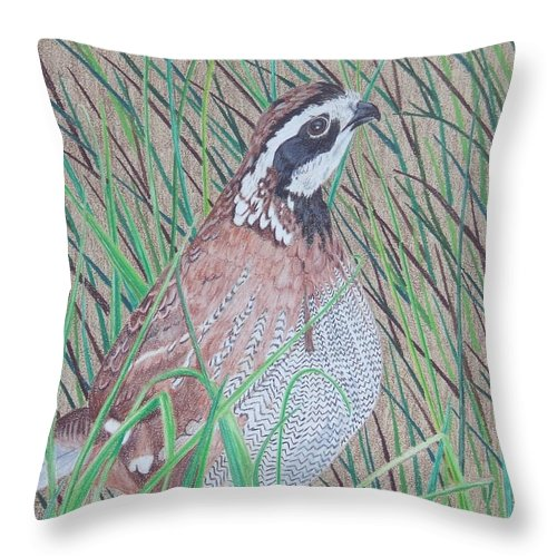 Quail Throw Pillow featuring the painting In The Tall Grass by Anita Putman