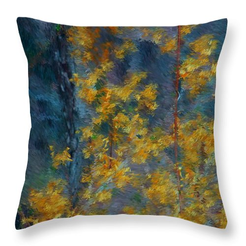 Throw Pillow featuring the photograph In The Woods by David Lane