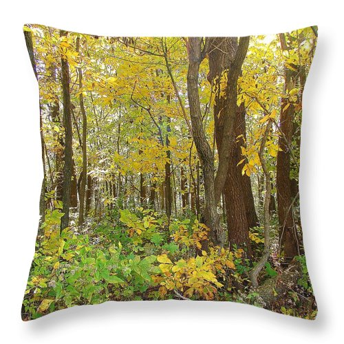 Throw Pillow featuring the photograph In The Woods by Luciana Seymour