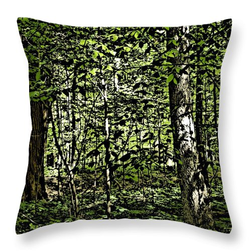Landscape Throw Pillow featuring the photograph In The Woods Wc by David Lane