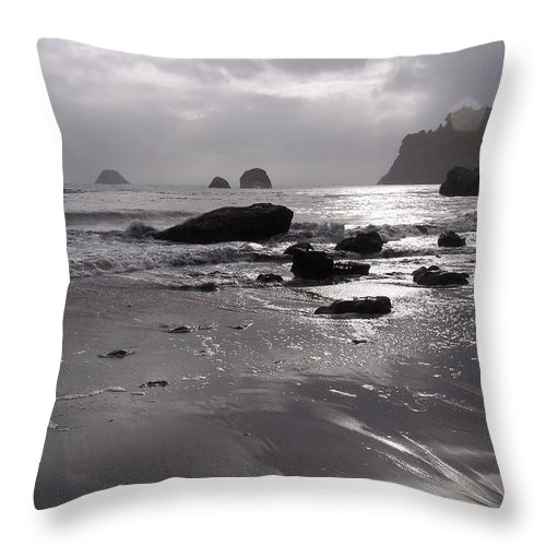 Beach Throw Pillow featuring the photograph Indian Beach by Gale Cochran-Smith