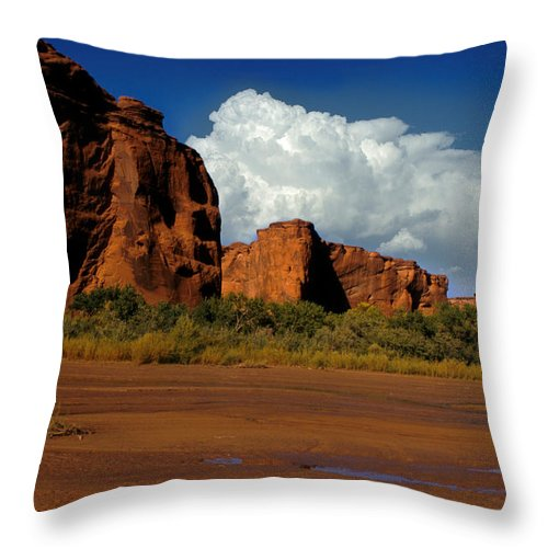 Horses Throw Pillow featuring the photograph Indian Ponies In The Canyon by Jerry McElroy