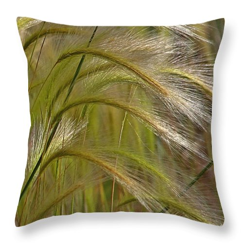 Grass Throw Pillow featuring the photograph Indiangrass Swaying Softly With The Wind by Christine Till