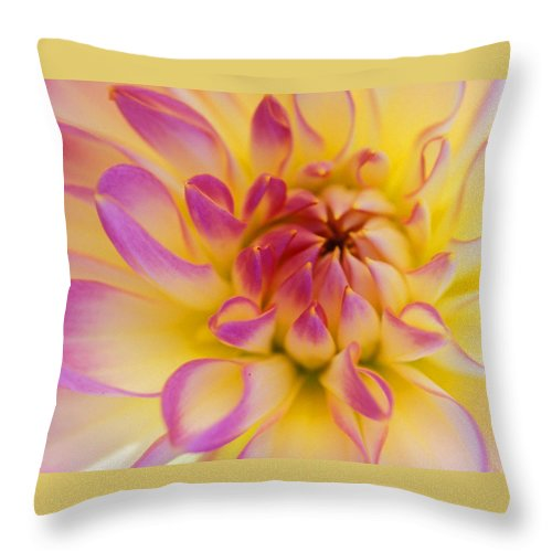 Floral Throw Pillow featuring the photograph Inner Beauty by Kathy Yates