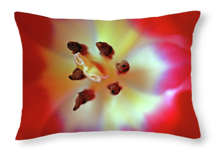 Tulip Throw Pillow featuring the photograph Inner Spirit by Bill Morgenstern