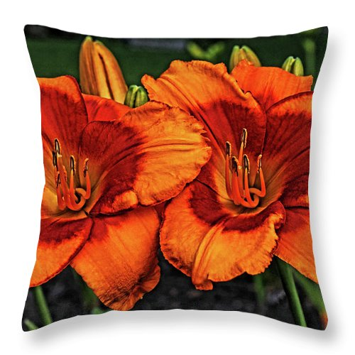 Bloom Throw Pillow featuring the photograph Innocent Fire by Judy Vincent