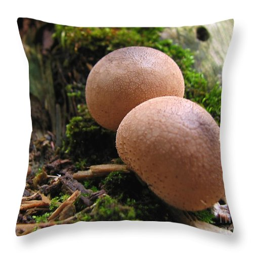 Macro Throw Pillow featuring the photograph Interesting Pair by Todd Blanchard