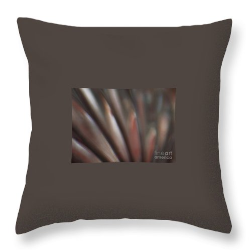 Crystal Throw Pillow featuring the photograph Internal Reflection by Linda Shafer