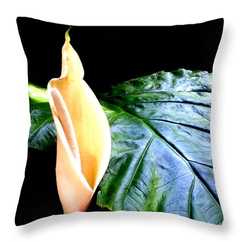 Square Throw Pillow featuring the digital art Intimacy by Eikoni Images
