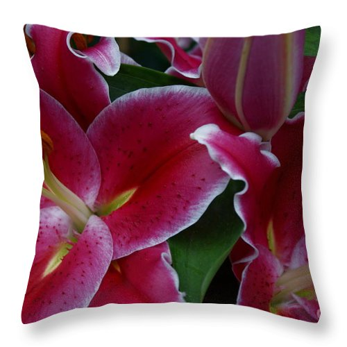 Lilies Throw Pillow featuring the photograph Intimate by Joanne Smoley