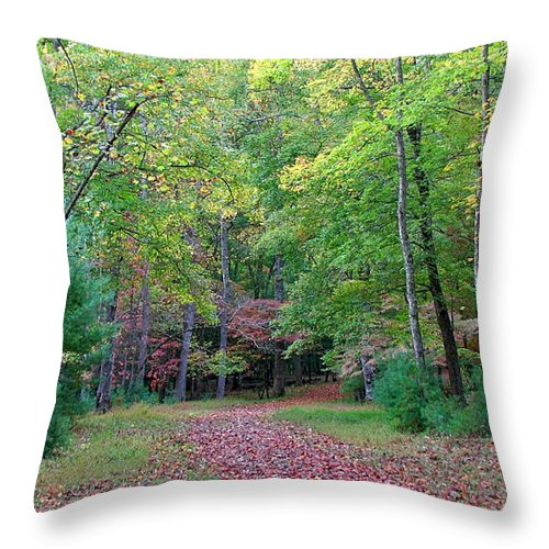 Landscape Throw Pillow featuring the photograph Into The Forest by Todd Blanchard