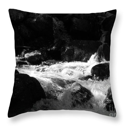 Rivers Throw Pillow featuring the photograph Into The Light by Amanda Barcon