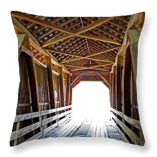 Light Throw Pillow featuring the photograph Into The Light by Margie Wildblood