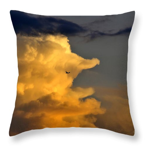 Flying Throw Pillow featuring the photograph Into The Storm by David Lee Thompson